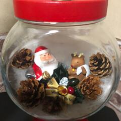 キャンディポット/ツリー/リース/クリスマスインテリア/100均/ダイソー/... 今日、ダイソーやセリアで、クリスマスグッ…(5枚目)