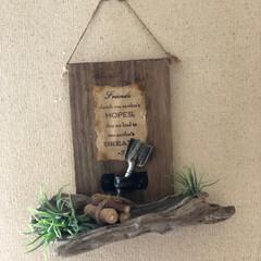壁飾り/フェイクグリーン/流木/雑貨 雑貨だいすき♡ これは、端材と流木やフェ…