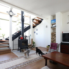猫と暮らす/2階リビング/薪ストーブ 日当たりのいい2階リビングで、猫たちもの…
