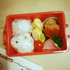 隙間おかず/幼稚園/お弁当