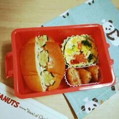 幼稚園/お弁当 (1枚目)