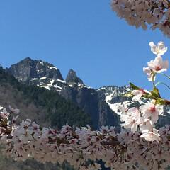 アウトドア/登山 北アルプス南部に位置する錫杖岳。 中尾温…