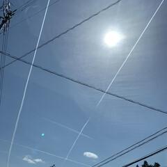 飛行機/空 飛行機曇と電線のコラボ 芸術です。(1枚目)