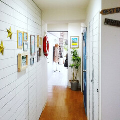 DIY/ペイント/古材風/板壁/収納扉/ドアリメイク/... 玄関からリビングへ向かう廊下  サイドは…
