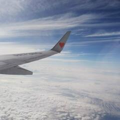 空の上/雲/景色/青空/飛行機/おでかけ