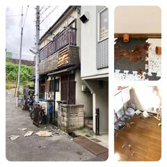 多肉ダイブ/ワレバリウム/多肉/寝屋川/大阪/揺れすぎ/... 地震、うちの地域は震度5強との事でめっち…