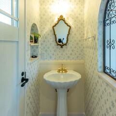 ぺディスタルの洗面/アイアンパネル/ゴールドの鏡/ニッチ収納/ゴールドの水栓金具/輸入水栓 2階洗面コーナーのご紹介です。 ぺディス…(1枚目)