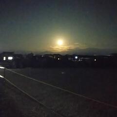 お月様/暮らし 今日も、デカいぞ🤭 お月様🌃