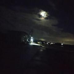 冬/夜の犬散歩 今日1日、寒い日でした。 みぞれ混じりの…