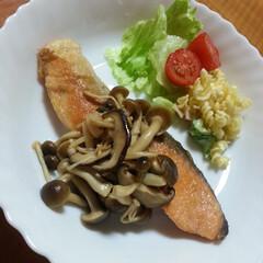 きのこ/料理/生鮭/北海道/秋/おうちごはん 秋はきのこが美味しい! 北海道の生鮭をム…