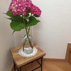 梅雨 お手製の花台に飾ってみました〜 今年の紫…