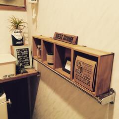 タオルハンガー/トイレ/セリア/簡単な棚/トイレリメイク トイレに備え付けのタオルハンガーの上に、…