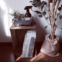 アクリル絵具/salut!/100均/セリア/ダイソー/ニトリ ソファ横に自分用の本棚をsalutの木箱…