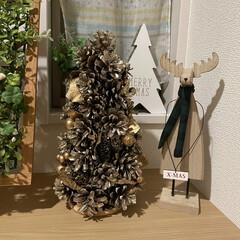 ツリー/ゴールド/松ぼっくり/クリスマス/玄関/キャンドゥ/... 1時間悩んで…買いました😅笑
