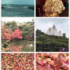 金沢/日本海/アイス/金箔/もみじ/紅葉/... 去年のですが… 金沢に行ってきました🍁🍂…