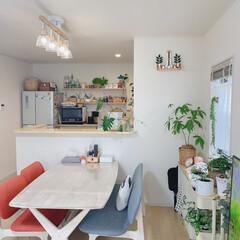 建売住宅だけど可愛く/ダイニング/リビング/キッチン/IKEA/3COINS/... 今日も違う角度から📸(1枚目)