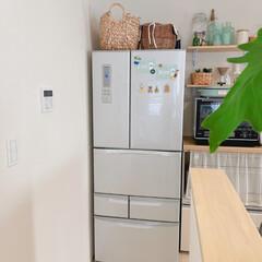 冷蔵庫/キッチン/雑貨/カフェ風/北欧/ナチュラル 冷蔵庫は、元気なのですが。。。 冷凍庫の…(1枚目)