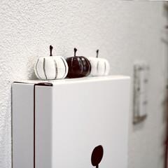 ハロウィン/IKEA/キーボックス/モノトーン/白黒 玄関のキーボックス。 ちょっとだけハロウ…
