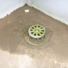 ホームインスペクション/インスペクション/住宅診断/検査/庭・ガーデニングリフォーム 排水目皿にゴミが詰まっており、排水が滞る…