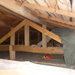 ホームインスペクション/インスペクション/住宅診断/検査 【小屋裏の調査風景】天井点検口より内部を…