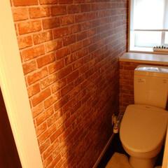 トイレ/壁紙/レンガ こんなトイレはどうですか?(^O^)/ …