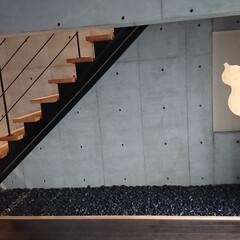 階段/モダン/砂利/コンクリ モダンな階段 コンクリート打ちっぱなしの…
