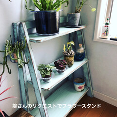 観葉植物/DIY/ハンドメイド/家具/住まい/リフォーム (1枚目)