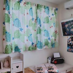 中学生部屋/娘部屋/遮光カーテン/ピンク/カーテン/ニトリ/... 娘の部屋。ニトリの遮光入りカーテン。 シ…(3枚目)
