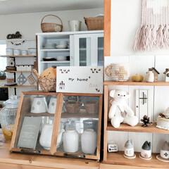 ナチュラルインテリアが好き/可愛い作品/飾り棚DIY/ショーケースDIY/キッチン (1枚目)