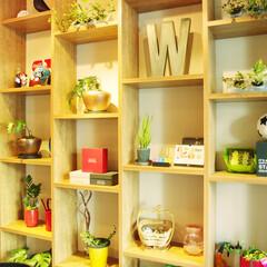 カフェ/ポップ/カラフル/ウッド/アート/ルーバー/... 温かみのあるウッドで仕上げた左右の壁面棚…