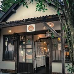 コーヒー/木の家/古民家風/ベーグルクーボー/那須町/栃木県/... モチモチベーグルです。    シンプルな…(6枚目)