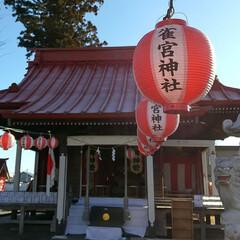 初詣/宇都宮/雀宮/雀宮神社 地元の神社へ初詣 たくさんの人が朝早くか…