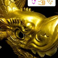 ゴールド/シャチホコ/名古屋/金シャチ 名古屋の金鯱 モヤモヤした気分を、パッと…