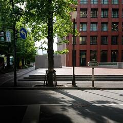 丸の内ブリックスクエア/誰もいない空間/お盆休み 人の多い都会でも、ふっと誰もいない空間に…