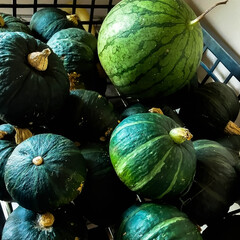 夏野菜/ビタミンC/ビタミンB/カロテン/かぼちゃ天ぷら/カボチャ煮物/... 小振りですが、たくさんのカボチャ 煮物、…