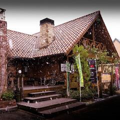 雪/ログハウス/木の家/薪ストーブ 4月10日 雪