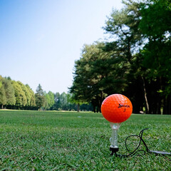 ゴルフ/星の宮CC 今日はゴルフ 快晴で良い陽気でした スコ…