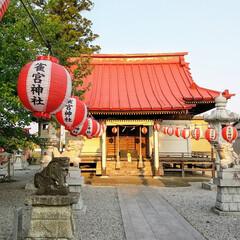 ヒノキ/手水舎/雀宮神社/宇都宮 ご縁がありまして、地元の雀宮神社で手水舎…