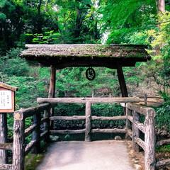 栃木県/井戸/パワースポット/神社巡り/ねこ/佐野市/... 大炊井(おおいのい)という井戸 大きな池…