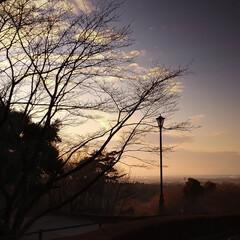 道の駅ましこ/益子焼/益子町 仕事で益子町へ 年末で人はまばらでした。…(2枚目)