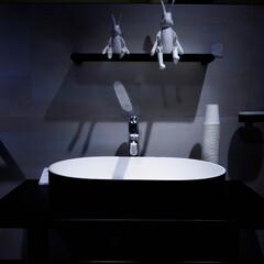 サンワカンパニー/洗面ボウル サンワカンパニーさんの洗面ボウル 使うの…