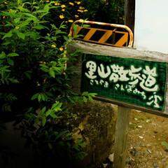 里山散歩道/看板/益子 里山散歩道 看板がひっそりと立っていまし…