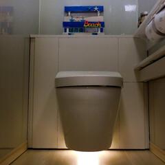 100均/100均グッズ/DIY/100均DIY/TOTO/TOTOレストパル/... こちらのトイレにもDIY作品を飾ってみま…