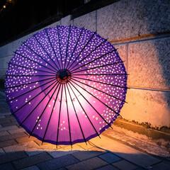 ノスタルジック/和傘/提灯/光りのイベント/那珂川町/栃木県 光りのイベントの続きです。 辺りは暗くな…(4枚目)