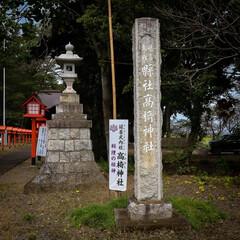 鯉の明神/小山市/栃木県/高椅神社 神社巡り 色鮮やかな「楼門」です😆✨  …(2枚目)
