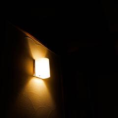 新築/リフォーム/宇都宮/木の家づくり/木の家/スギ床/... 素材にこだわった寝室です。 快適な睡眠の…(3枚目)