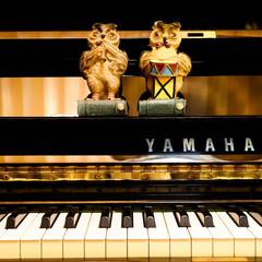 ダイソー/おもちゃ/オーケストラ/ピアノ こちらも昔買ったダイソーのおもちゃ 今も…