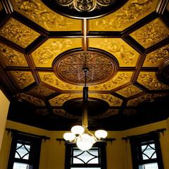 旧岩崎邸/天井 「自分の家の天井はどんな模様クロスだった…