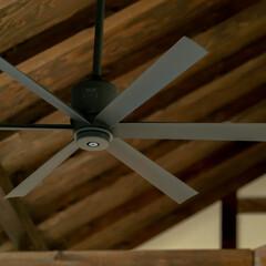 ひのき/無垢材/木の家づくり/サイエンスホーム/阿部興業株式会社/宇都宮市/...    勾配天井のリビングです。解放感があ…(3枚目)