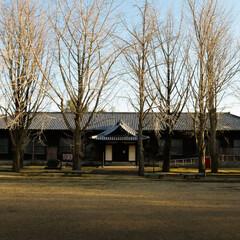 旧水戸農業高等学校本館/イチョウ並木/茨城県歴史館/茨城県/シンメトリー/左右対称 左右対称な建物は、安定感があって美しいで…
